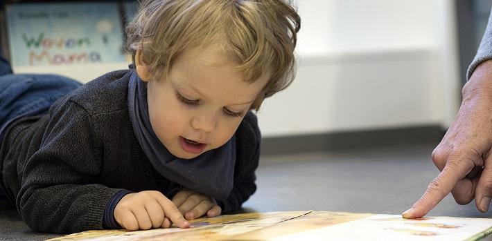 Junge liest Bilderbuch