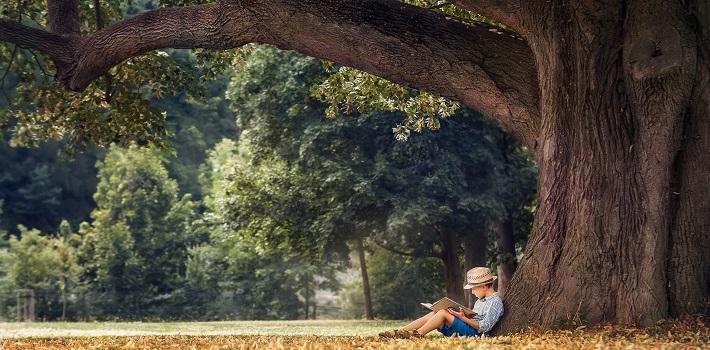 Junge sitzt unter einem Baum und liest